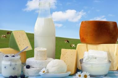 Il settore lattiero caseareo biologico
