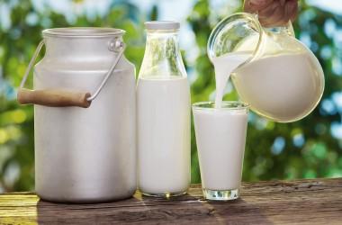 Il latte biologico: nutre e fa bene (dati alla mano!)