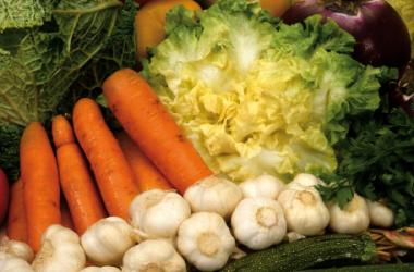 Dieta Nutrigenomica Ongaro