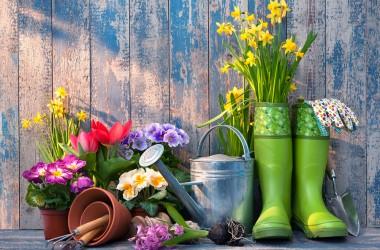 Giardinaggio: nuova frontiera del fitness