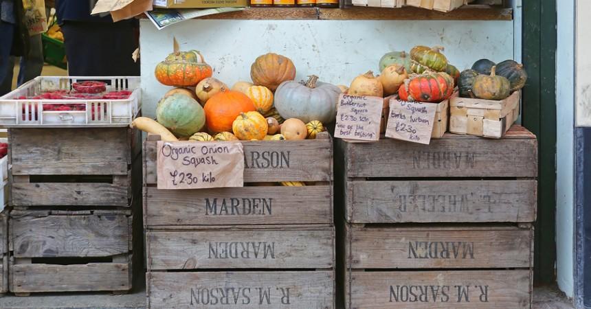 La spesa di Novembre: frutta e verdura