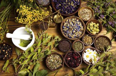 Tisane: rimedi naturali benefici per la salute
